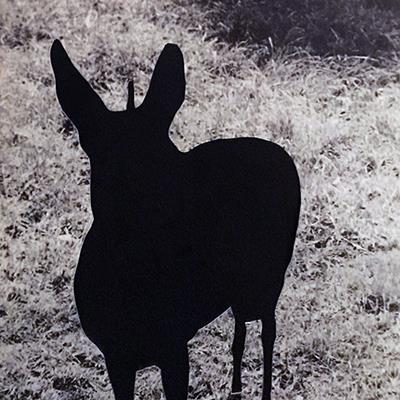 رضا آرامش | کلاژ | 25 × 37 سانتیمتر | قیمت 12,000,000 تومان، تخفیف در نمایشگاه شبتاب 6,000,000 تومان - فروخته شد