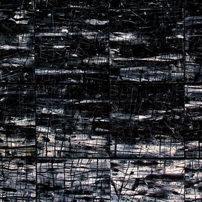 جنگل سیاه 2