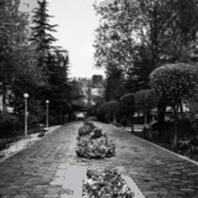 رضا بهرامینژاد