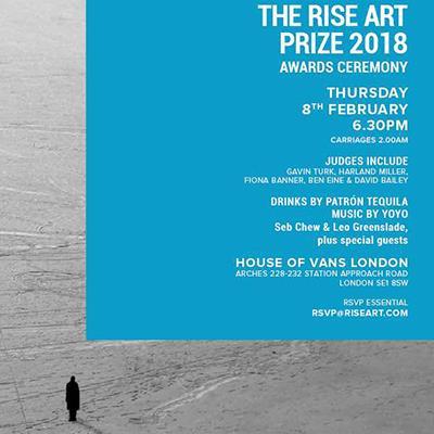 Heja Rahiminia among 2018 Rise Art Prize finalists